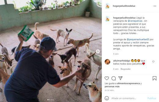 refugios de animales en Venezuela