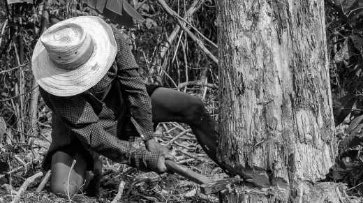 leyendas venezolanas el hachador perdido
