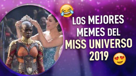 memes del miss universo 2019