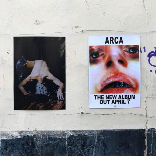 albumes de arca