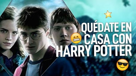 harry potter en casa