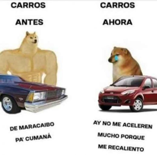 meme perro grande perro pequeño carros