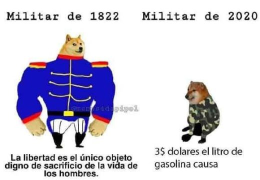 meme perro grande perro pequeño militar