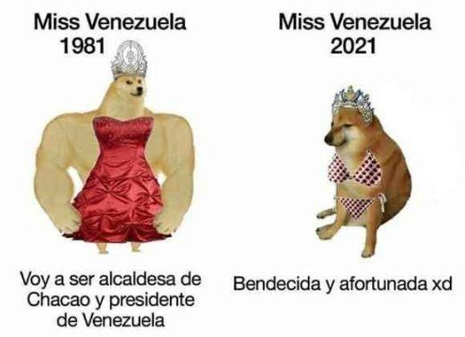 meme perro grande perro pequeño miss venezuela