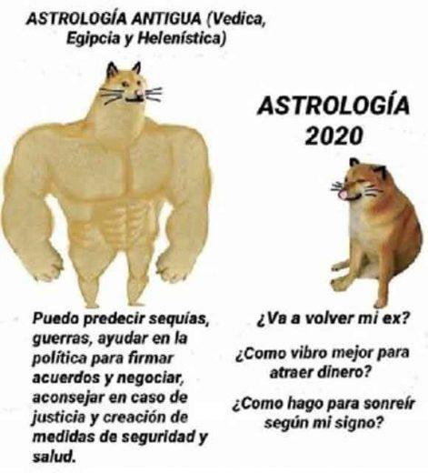 meme perro grande perro pequeño astrologia