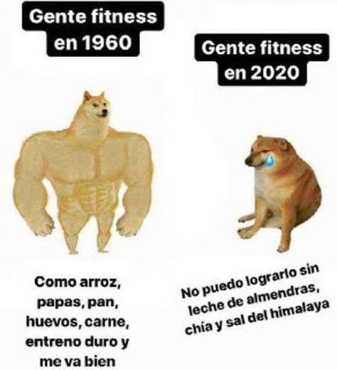 meme perro grande perro pequeño gente fitness