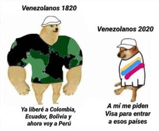 meme del perro gran y el pequeño venezolanos