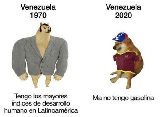 meme perro venezuela antes y despues