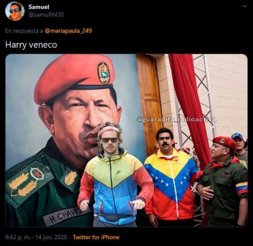 harry styles veneco