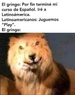 meme del leon gringo juguemos play