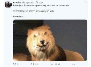 memes del leon gringo confundido