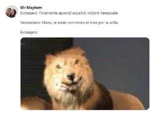 meme del leon extranjero