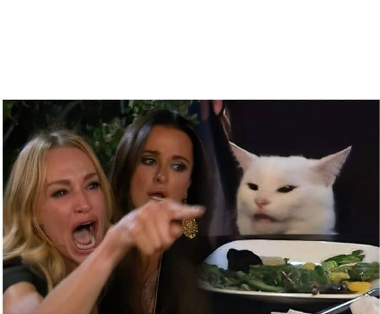 plantilla meme gato en la mesa.