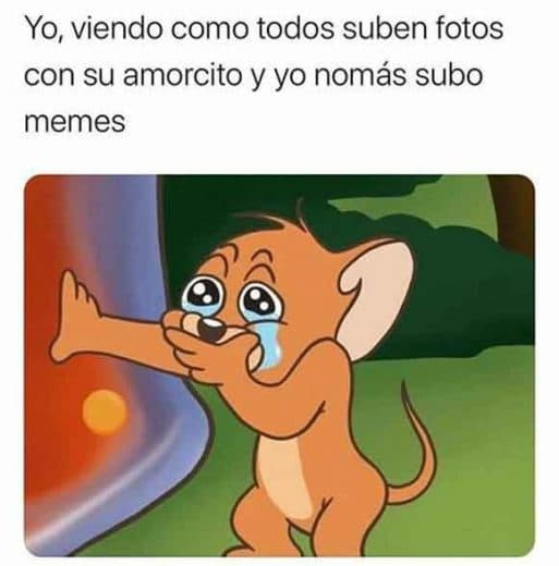 jerry llorando meme
