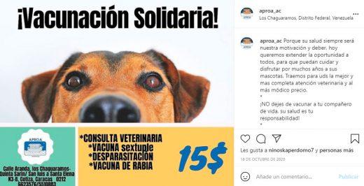organizaciones animales en Caracas