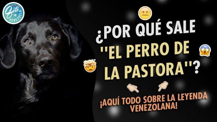 el perro de la pastora leyenda venezolana